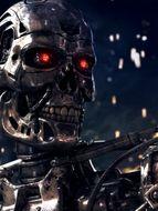 photo Terminator