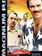 Magnum Saison 6