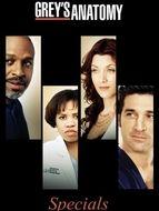 Grey's Anatomy Specials