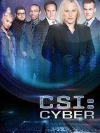 Les Experts : Cyber Saison 1