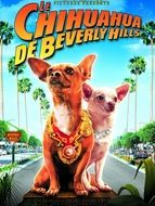 Chihuahua de Beverly Hills (Le)