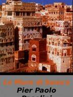 Les Murs de Sana'a