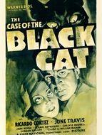Chat noir (Le)