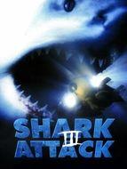 Shark attack / Alerte aux requins
