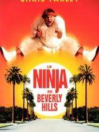 Ninja de Beverly Hills (Le)