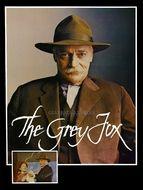 Grey Fox (The)