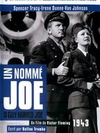 Un nommé Joe