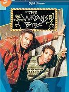 Les frères Wayans