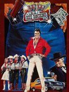 W.W. and the Dixie Dancekings