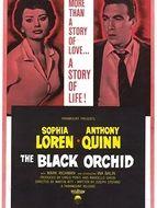 L'orchidée noire
