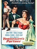 Le Bagarreur Du Tennessee