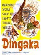 Dingaka le sorcier