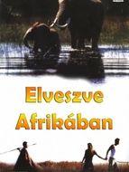 L'Ami Africain