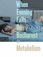 Métabolisme ou quand le soir tombe sur Bucarest