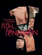 Chair pour Frankenstein