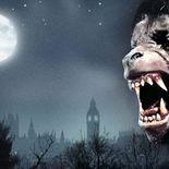 Photo Affiche Loup-Garou de Londres