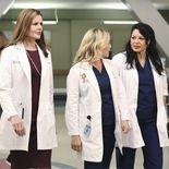photo, Grey's Anatomy, Sara Ramirez