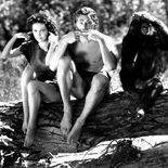 photo, Tarzan, l'homme singe, Maureen O'Sullivan