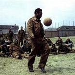 photo, Pelé