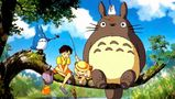 photo Totoro