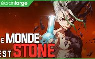 Dr. STONE : Video Ecran Large