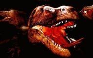 Komodo : Bande-annonce VO