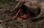 Leatherface : Bande-annonce non-censurée VO