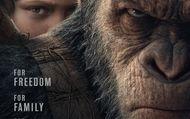 La Planète des singes : Suprématie : teaser trailer VO