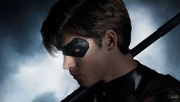 Photo Robin, Titans