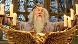 Photo Dumbledore