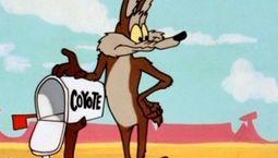 photo Will E Coyote