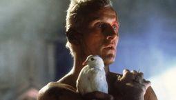 photo, Blade Runner