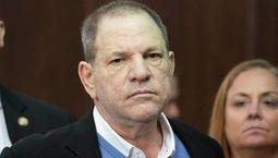 photo, L'Intouchable, Harvey Weinstein, Harvey Weinstein