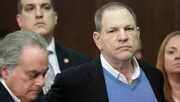 photo, L'Intouchable, Harvey Weinstein, Harvey Weinstein