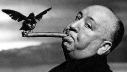 Photo Hitchcock