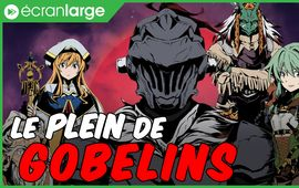 Goblin Slayer - Brand new day : un spin-off sang concession