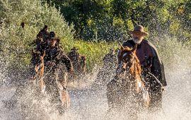 Godless : la série western de Steven Soderbergh se dévoile dans une première bande-annonce
