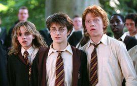 Harry Potter : après Les Animaux Fantastiques, l'univers des sorciers pourrait revenir en série avec WarnerMedia