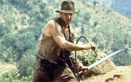 Indiana Jones 5 : Harrison Ford donne des détails sur la prochaine suite de la saga