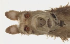 Wes Anderson tease son prochain film d'animation avec Edward Norton
