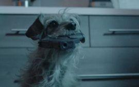 Et si c'était le chien de John Wick qui vengeait la mort de son maître