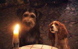 La Belle et le Clochard : critique qui donne sa langue au chien