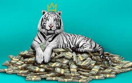 Le Tigre blanc : critique opportuniste sur Netflix