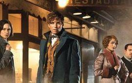 Les Animaux fantastiques : J.K Rowling et Eddie Redmayne nous en disent plus sur le nouveau héros