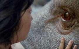 Okja : critique cochonne