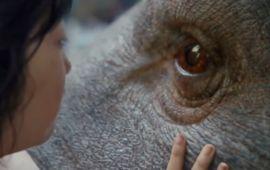 Netflix dévoile le premier trailer d'Okja, nouveau film du réalisateur de Snowpiercer