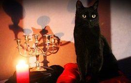 Sabrina, l'apprentie sorcière : le reboot estampillé Netflix se montre dans des premières images ensorcelantes