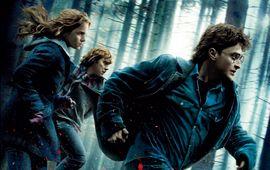 Harry Potter et les reliques de la mort (partie 1) : critique qui erre
