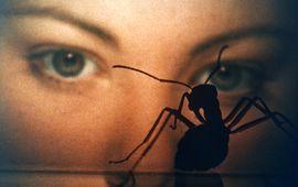 Phase IV : une nouvelle fin hallucinée pour les fourmis