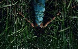 Dans les hautes herbes : Netflix dévoile le premier trailer angoissant de sa nouvelle adaptation de Stephen King
